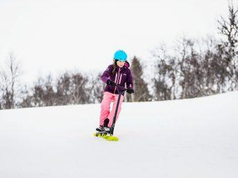 Stiga Sneeuw Step